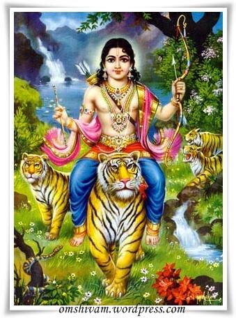 Makara Jyothi Jai Guru Dev