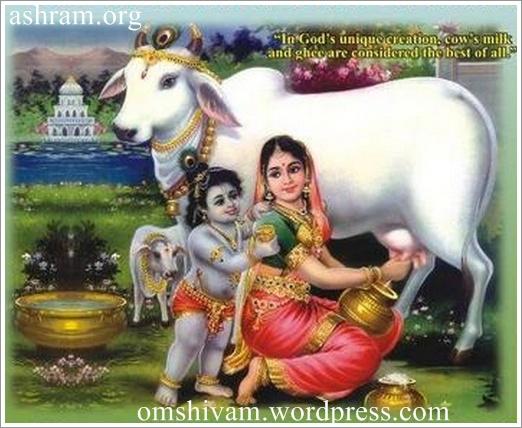 lord sri ganesha shri krishna jai guru dev