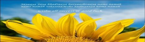 sun flower aditya