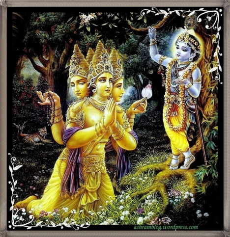the-abode-of-kindness-asaram-bapuji